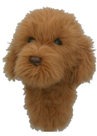 Daphne's HeadCovers: Labradoodle / Doodle Dog Golf クラブ カバー (海外取寄せ品)