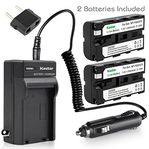 NEW Charger + 2 バッテリー for ソニー InfoLithium L NP-F550 NPF330 CCD-TR516 CCD-TR716 CCD-TR818 CCD-TR910 CCD-TR917 CCD-TR930 CCD-TR940 CCD-TRV101 + Car Plug 「汎用品」(海外取寄せ品)