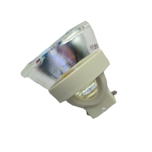 LCD Projector リプレイスメント ランプ Bulb For EPSON ELPLP47 V13H010L47 EB-G5100 EB-G5150NL (海外取寄せ品)