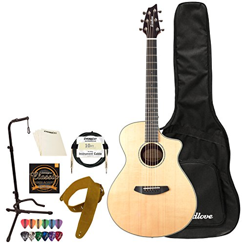 Breedlove Pursuit エキゾチック Concert CE Sitka-Ziricote Acoustic-Electric Guitar with Accessories (海外取寄せ品)