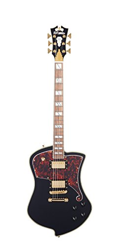 D'ANGELICO DADLUDSBKGS Deluxe Ludlow Electric Guitar - ブラック (海外取寄せ品)