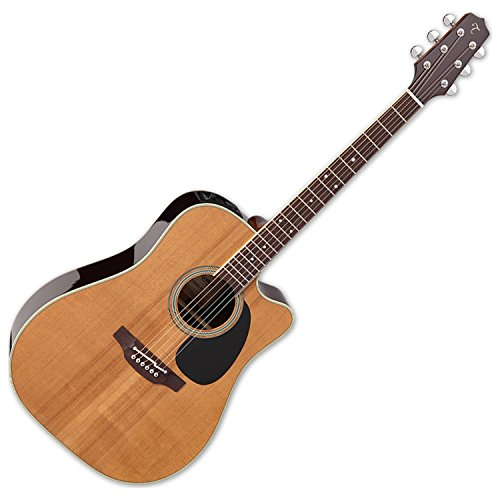 Takamine EF360SC TT Thermal Top Series Acoustic/Electric Guitar with ケース (海外取寄せ品)