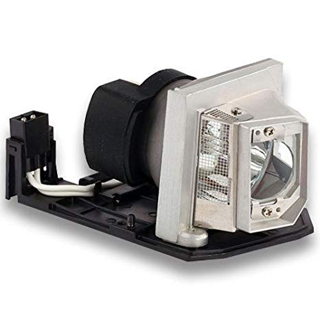 BL-FP230D/SP.8EG01GC01 OEM Lamp(Original Bulb and ジェネリック Generic Housing) for Optoma HD22 HD2200 HT1081 PRO800P TH1020 TW615-3D TX612 TX615 TX615-3D TX612-3D OPX3200 Projector BL FP230D 「汎用品」(海外取寄せ品)