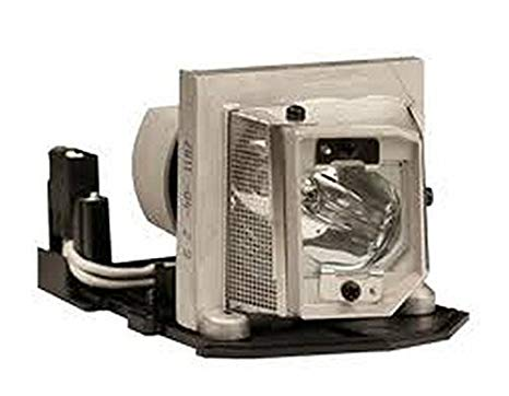 TH1060P Optoma Projector ランプ replacement. Projector ランプ assembly with Genuine オリジナル フィリップス UHP Bulb inside. (海外取寄せ品)