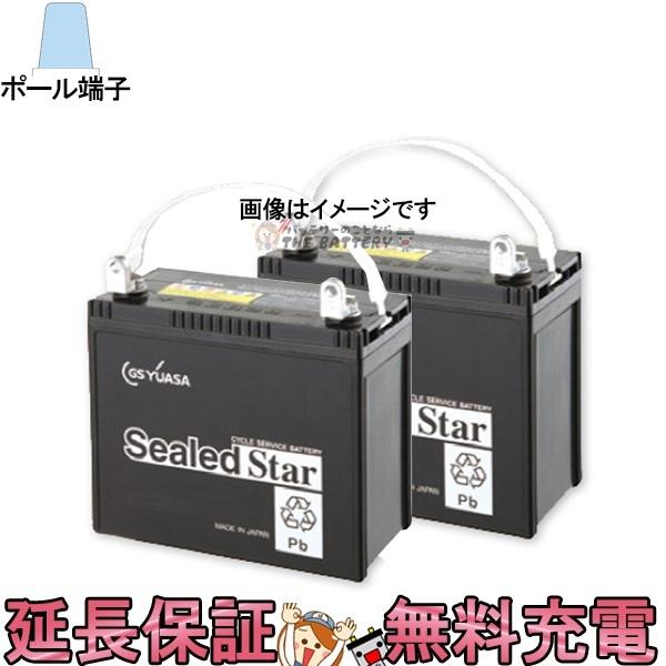 キャッシュレス5%還元 2個セット SEB35 ポールタイプ(テーパー端子) SEBシールドスターシリーズ