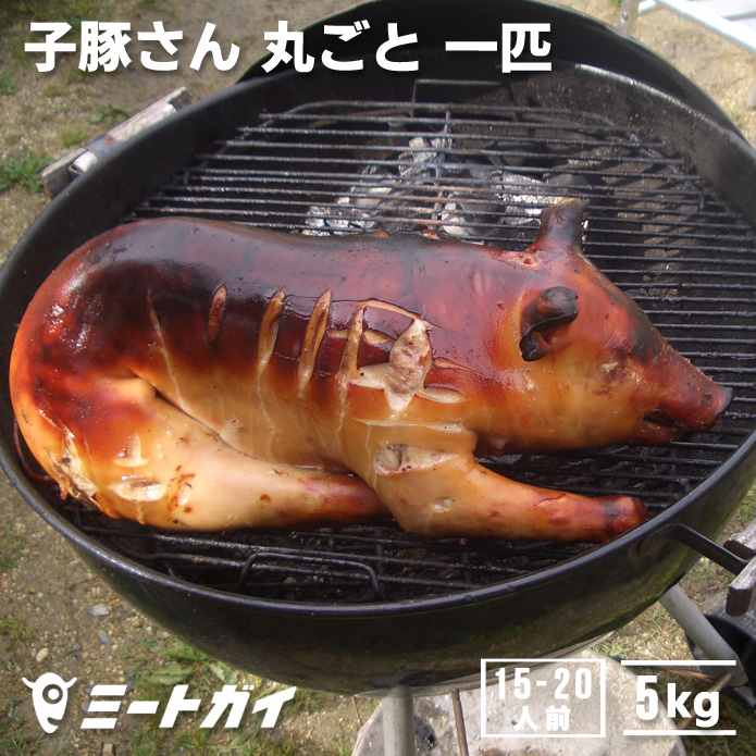 楽天市場】豚丸焼きに!仔豚・子豚さん丸ごと1匹(冷凍・生)≪雑誌掲載 ...