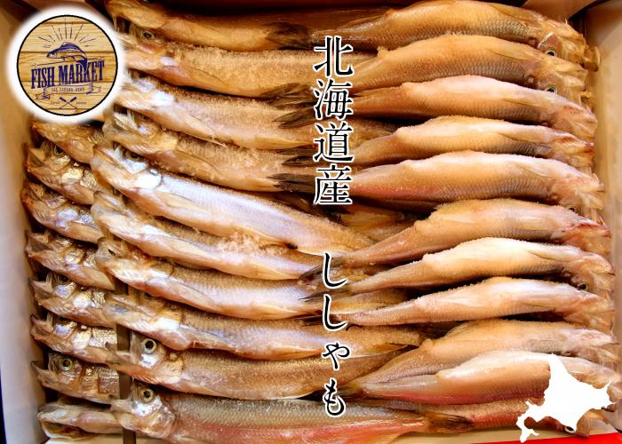 北海道産 本ししゃも 大サイズ オスメスセット 2箱 オス30尾 柳葉魚 北海道 ☆身はふっくら脂はジューシー ストア ししゃも ディスカウント メス30尾入