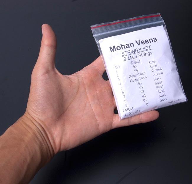 印度弦乐器 · 莫汉 · 维纳 (Mohan 维纳),字符串替换字符串集的字符串