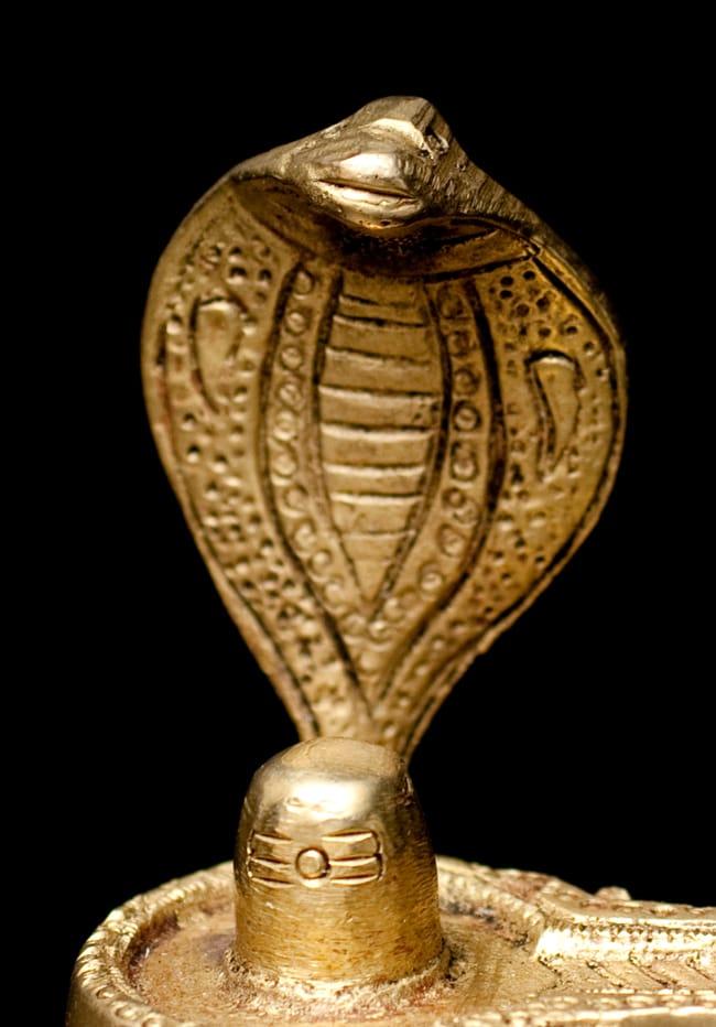 Tirakita Linga And Yoni Phosphorus Gum Shiva Hinduism
