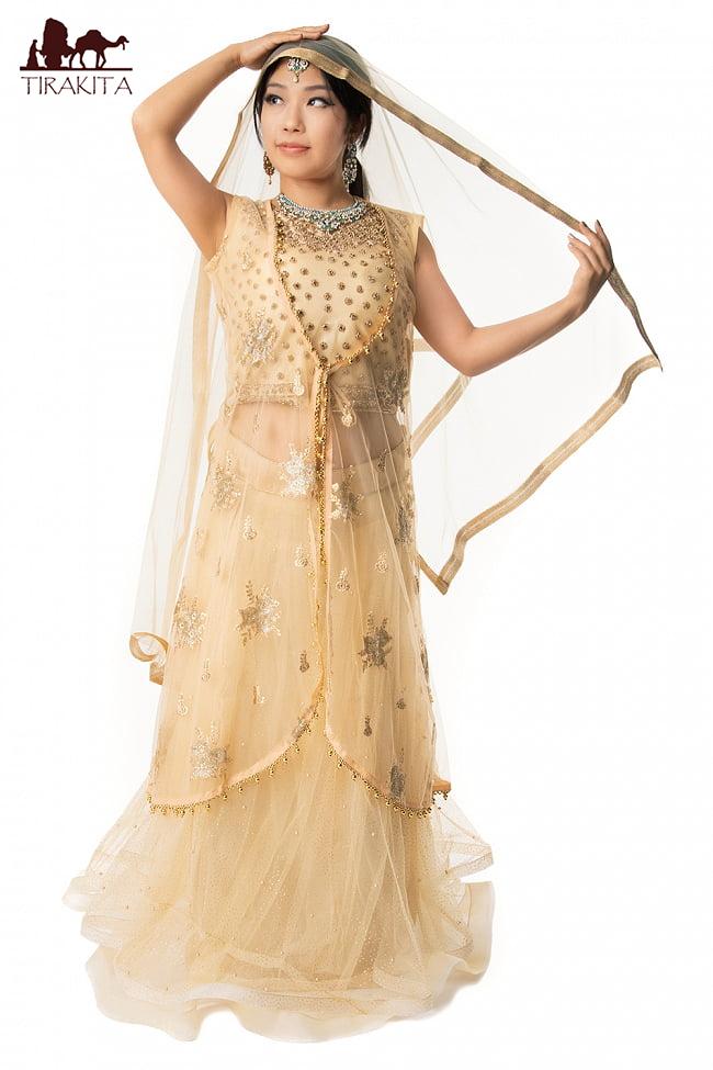 【送料無料】 インドのレヘンガドレスセット / パンジャビドレス パンジャービードレス サルワール カミーズ サリー レディース 女性物 エスニック衣料 アジアンファッション エスニックファッション
