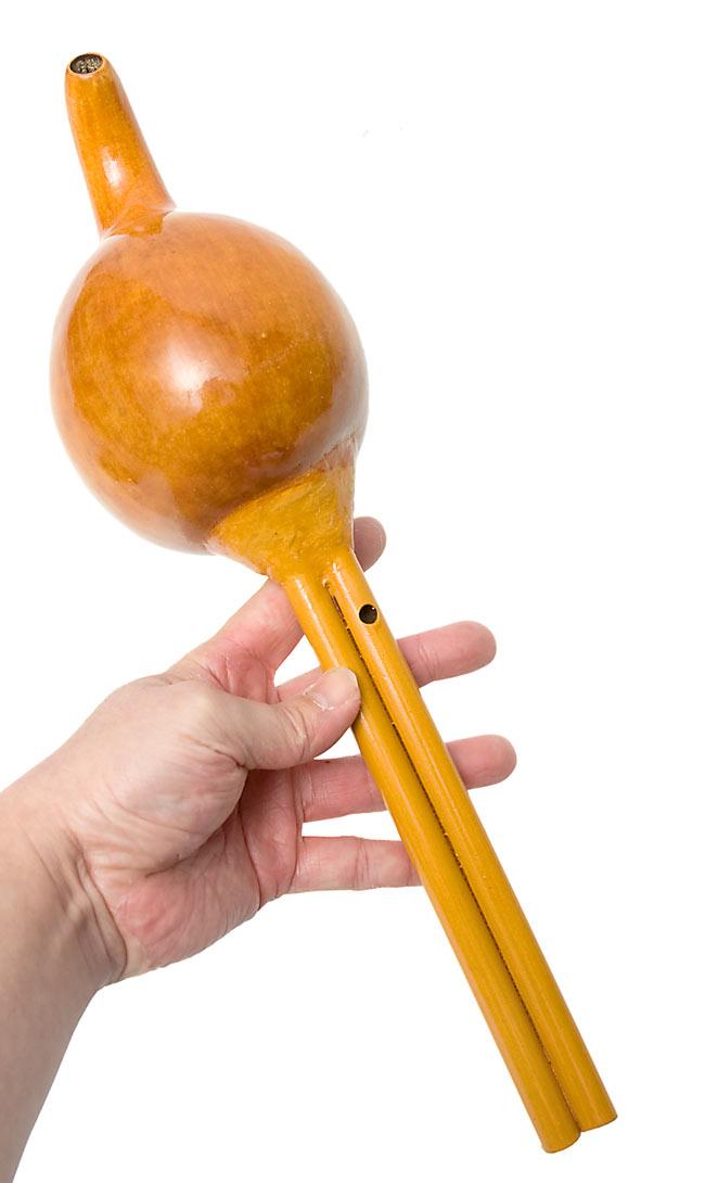 pungi玩蛇者的笛子| 印度乐器管乐器民族乐器亚洲族群