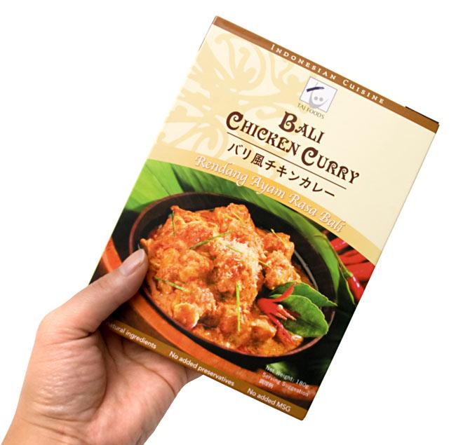 檳城風格辣番茄雞肉咖喱民族亞洲印度食品食品材料馬來西亞咖喱咖喱泰國