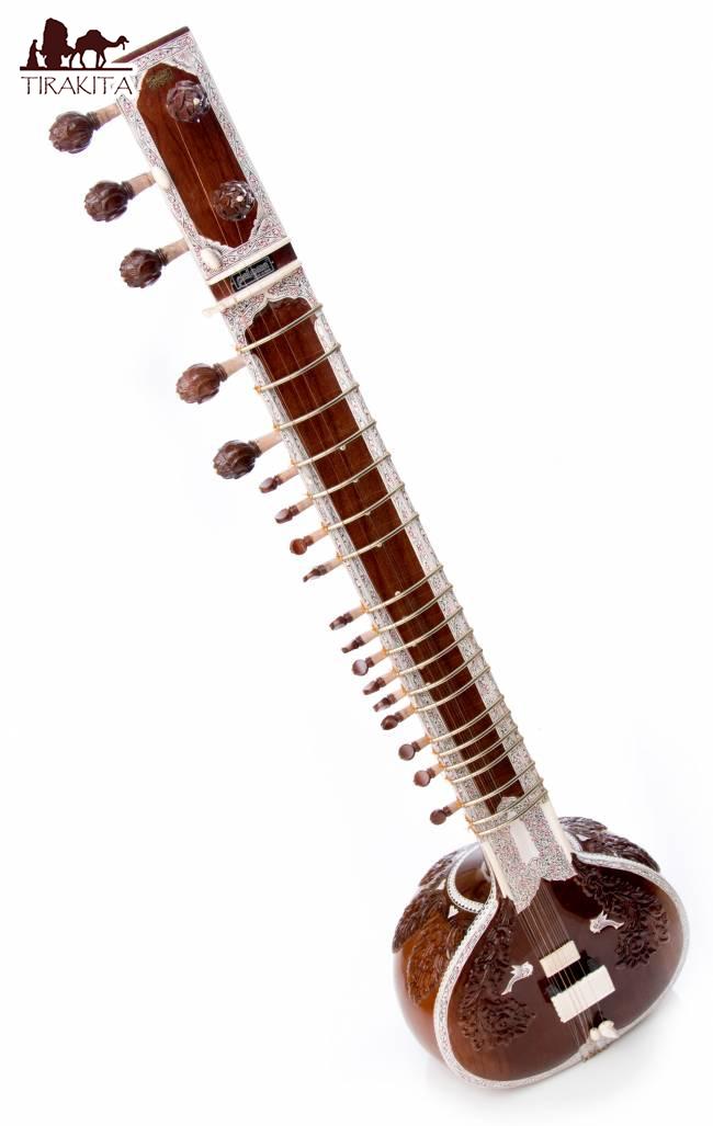 【PALOMA社製】高級シタールセット(グラスファイバーケース) / Sitar インド 楽器 弦楽器 送料無料 レビューでタイカレープレゼント あす楽