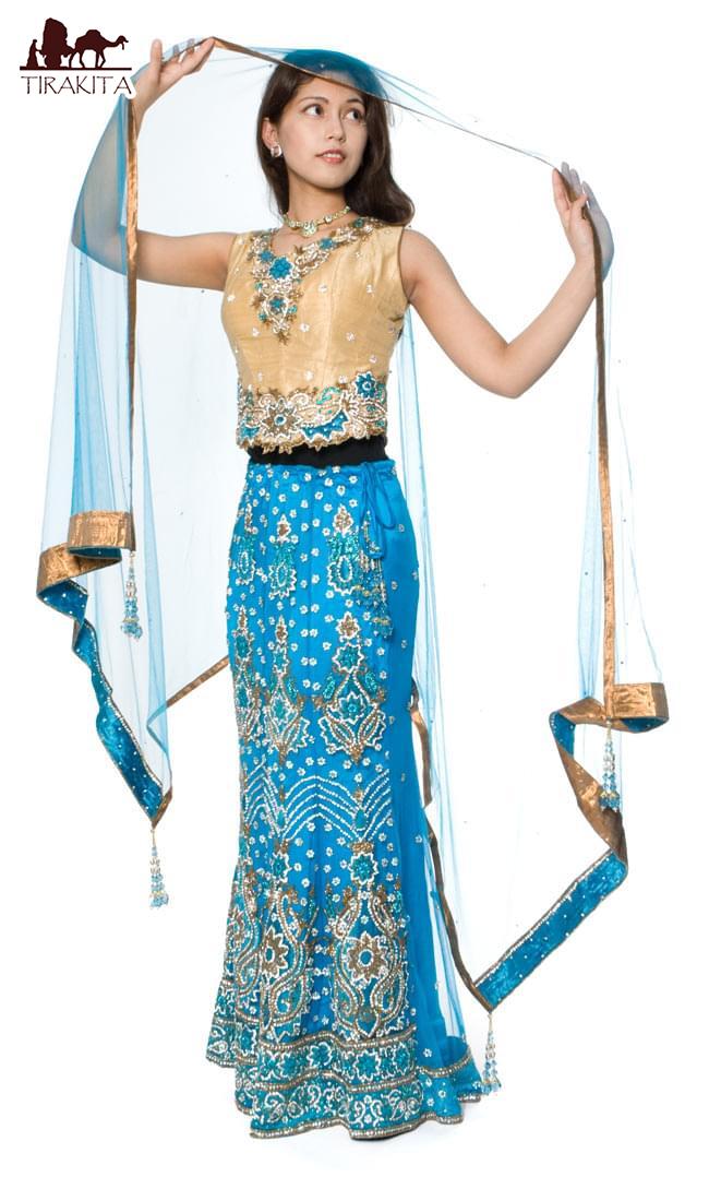 【送料無料】 【1点物】インドのゴージャスドレス スカイブルー / ウェディング サリー レディース 女性物 エスニック衣料 アジアンファッション エスニックファッション