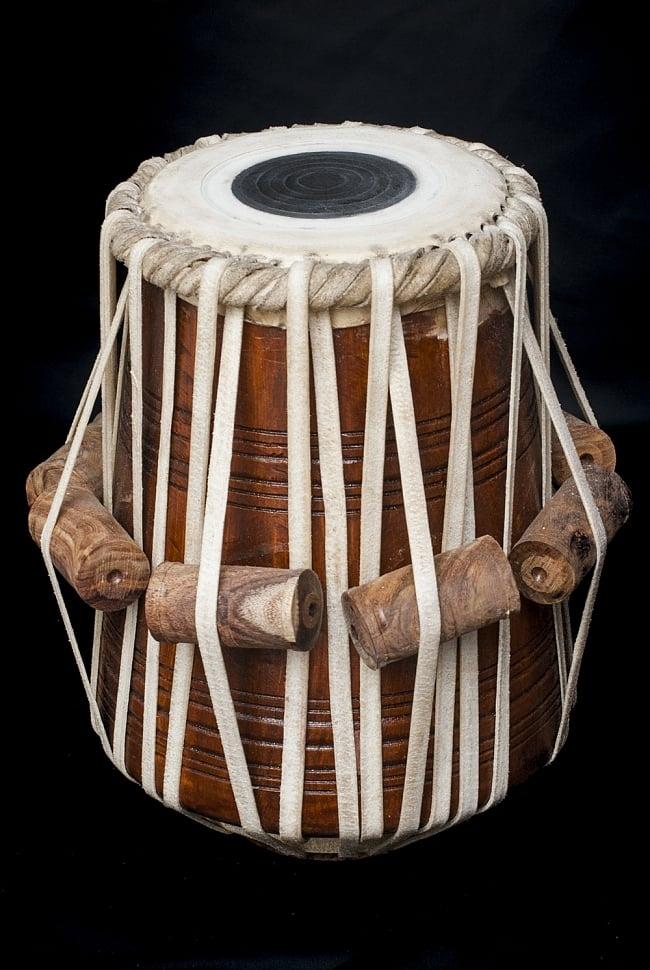 タブラ(単体) / ダヤン 打楽器 送料無料 レビューでタイカレープレゼント あす楽