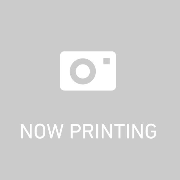 【P24倍以上!Rcard&R取付5/20Entry限定】【取付対象】【数量限定アウトレット17年製】送料無料 NANOENERGY M166 275/70R22.5 148/145J 1本価格 新品夏タイヤ トーヨータイヤ TOYO TIRES ナノエナジー