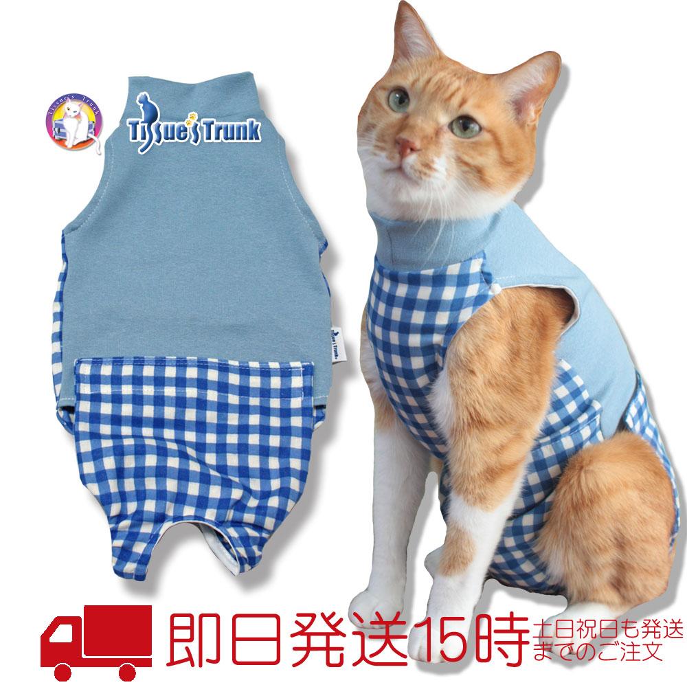 避妊手術 腫れ 猫