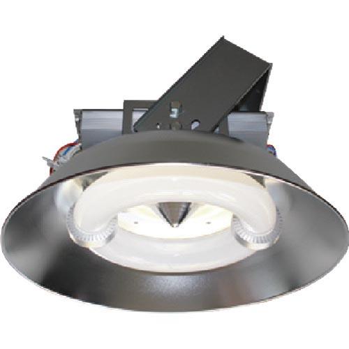 若者の大愛商品 ELI Lamp PL-564A-CC200W-A 屋内用 003453 ( 003453 ) 天草池田電機(株), 上志比村 7dca3673