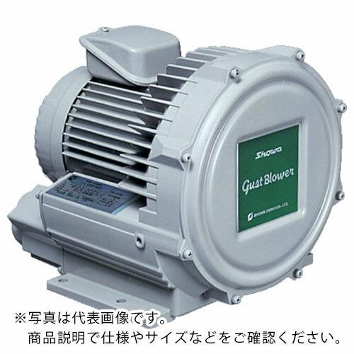 人気定番 昭和 電動送風機 渦流式高圧シリーズ ガストブロアシリーズ(0.4kW) U2V-40S ( U2V40S ) 昭和電機(株), ネットショップ出島 8ebbb3d5