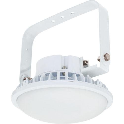 品質検査済 日動 ハイスペックハイディスク150W 電源装置内蔵型 昼白色 吊下げ型 乳白 L150B-P-HM110-50K ( L150BPHM11050K ) 日動工業(株), フィットネス&サプリメントのMW 7748c509