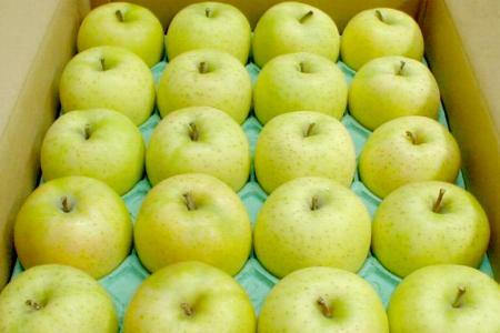 """作为藤崎町圆,并且甜料酒园的""""王林苹果""""5kg中的球18-20个进入,作为青森产●店长推荐的水果的酸味的少的甜的苹果的王林苹果♪02P11Mar16"""