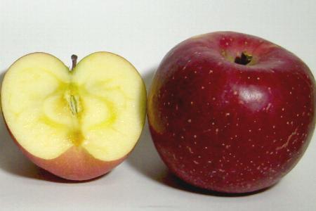 """长野生产""""太阳富士苹果""""10kg(进入20-24个超大球)[店长推荐的水果作为店长推荐的水果]""""苹果通""""用味道选的是信州的高原苹果。特大[P06Dec14]富士苹果/富士苹果/苹果"""