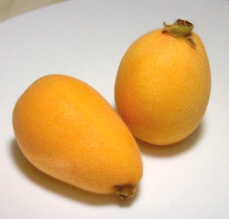 作为长崎生产高级温室biwa(茂木枇杷)2L尺寸大球9个装化妆盒赠答推荐的水果的长崎的枇杷是通知初夏的娇嫩的果实!532P15May16