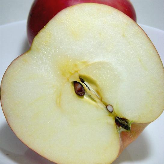 紅玉リンゴ(こうぎょくりんご)5kg 小玉23~25個入り 青森 長野産 アップル 林檎【ラッキーシール対応】