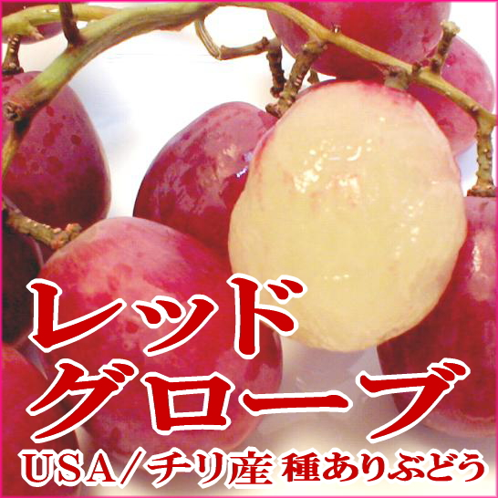 """红地球葡萄从智利 (我和 guroobu 葡萄) 4 公斤豪华酒和甜葡萄""""物种和""""02P23Apr16"""
