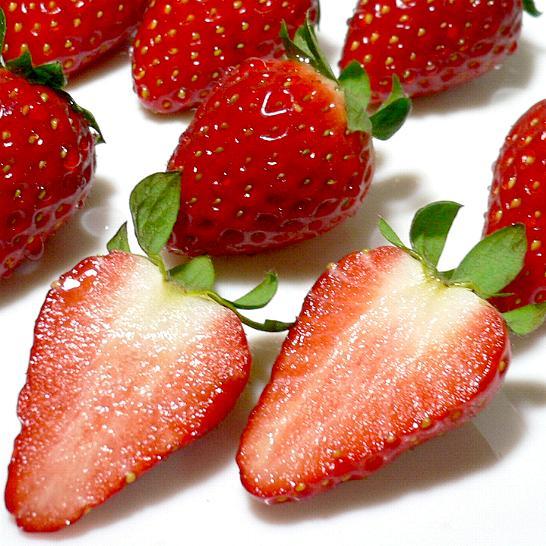 こと か いちご 古都華(ことか) < いちごの品種:旬の果物百科