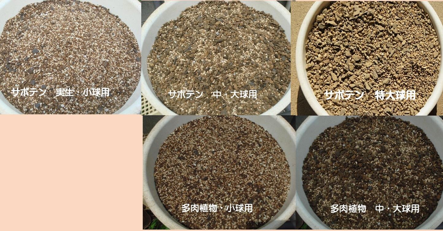 全商品オープニング価格 サボテン 多肉植物専門店の培養土 5kg 培養土 本店