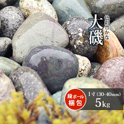 玉石>大磯>大磯 1寸(30-40mm)