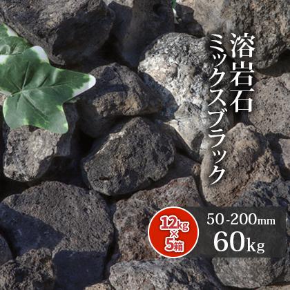 グレー・ブラック・ブラウンの混じる当店新商品の溶岩石♪ 【送料無料】溶岩石 ミックスブラック 50-200mm 60kg (12kg以上×5箱)