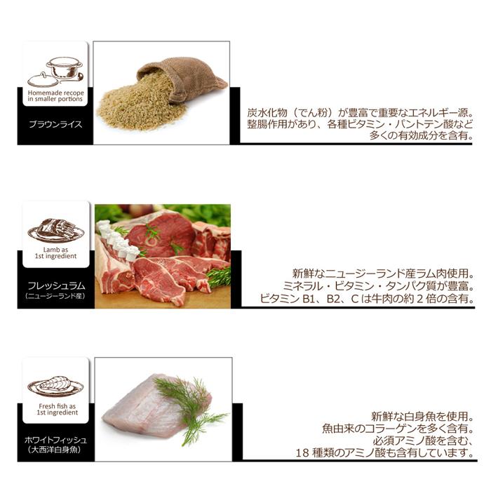 ファンタジーワールド オーブンベークドトラディション グレインフリー:チキン 66098156 (ドッグフード) 1kg【ネコポス不可】