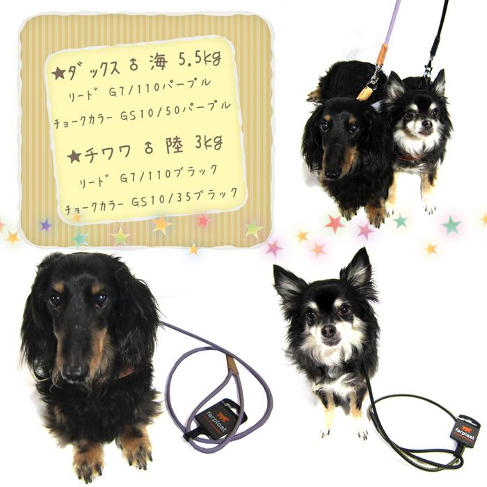 ファンタジーワールド ダービー リード G10/110 グリーン 75383202 (犬用リード)【ネコポス不可】