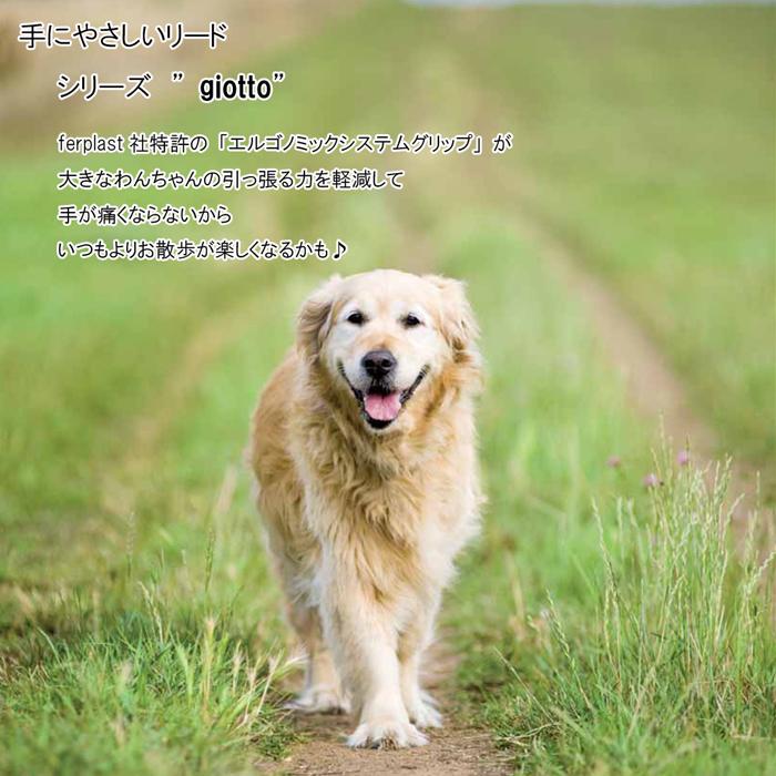 ファンタジーワールド ジオット GM25/60 タンビキ ナチュラル 76107051 (犬用リード)【ネコポス不可】