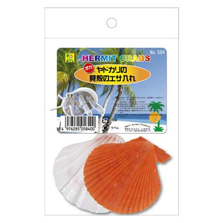 三晃商会 オカヤドカリの貝殻のエサ入れ 584 2枚入り ネコポス不可 オープニング 大放出セール 付与