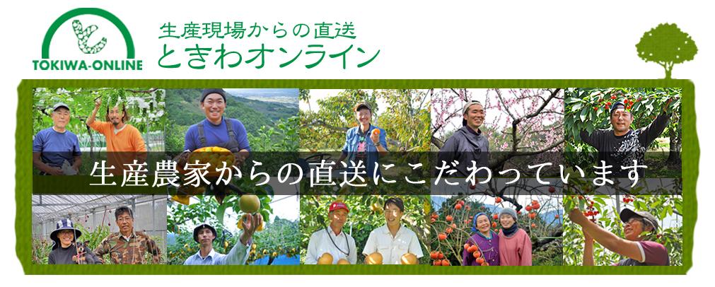 ときわオンライン:全国の旬の果物や野菜を生産農家から産地直送しています