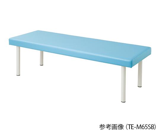 介護 医療用品 注目ブランド ベッド関連 カラフル診察台 スカイブルー ベッド高さ550mm 安心の定価販売 4589638302039