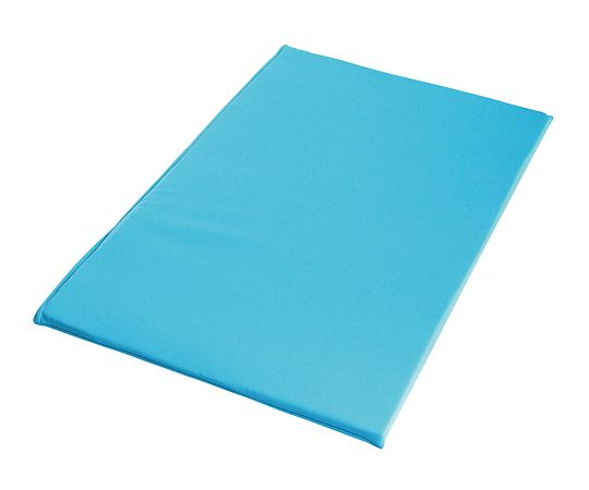 D.C.パッド タイプXL ブルー 600×980×25mm
