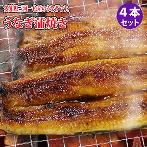 正真正銘 愛知県三河一色産のブランド鰻を使用 うなぎ蒲焼き 鰻 定番 4本セット 愛知県産ウナギかば焼き 入荷予定