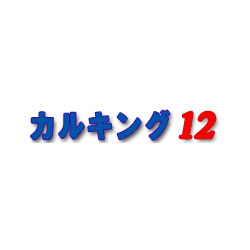 シンプレックス カルキング12 スタンダード版 1ユーザ 3ライセンス付