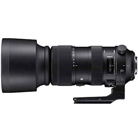 【長期保証付】シグマ 60-600MM F4.5-6.3 DG キヤノンEFマウント用