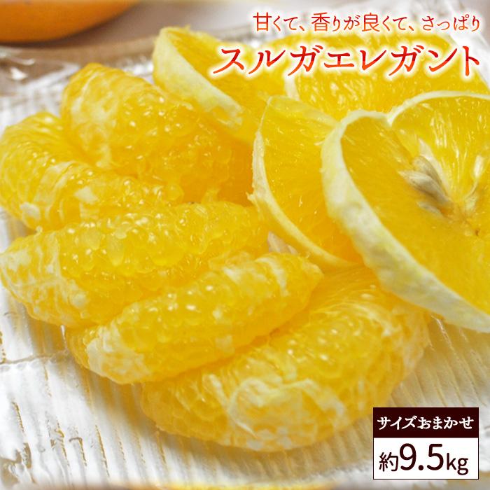 送料無料 家庭用 スルガエレガント 約9.5kg バラ詰め ※サイズおまかせ、甘夏、アマナツ、柑橘、
