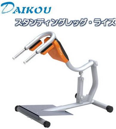 ダイコウ/DAIKOU スタンディングレッグ・ライズ GYMシリーズ DK-1206
