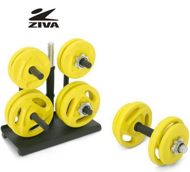 【ダンベルセット】 ZIVA/ジーヴァ スピンロック スタジオディスクダンベルセット 35kg(スタンド付き)