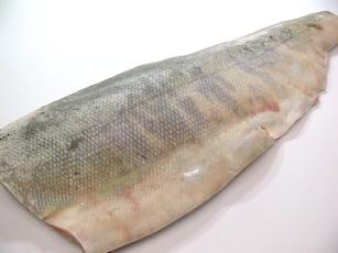 秋サケ フィレ 品質保証 新作通販 約800g~1Kg