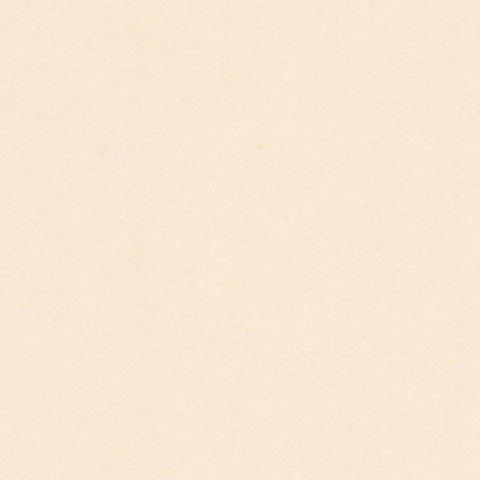 アイカ工業 メープル柄 柾目 FJRA421ZN セラールRエッジ 3×8(3×910×2 410mm)サイズ 【代引不可】