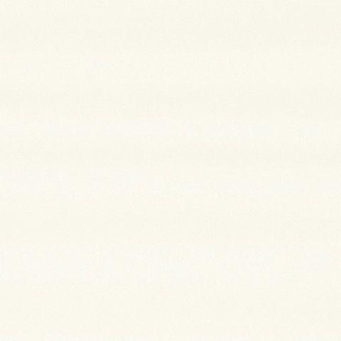 アイカ工業 単色柄 FYJA6200ZYN19 セラールバスルーム用 3×8(3×935×2 455mm)サイズ 【代引不可】