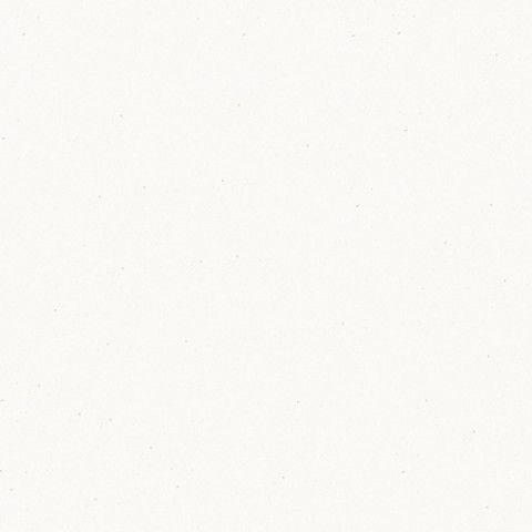 アイカ工業 単色柄 YFKA6200ZPN74 セラール ウイルテクトタイプ 3×8(3×935×2 455mm)サイズ 【代引不可】